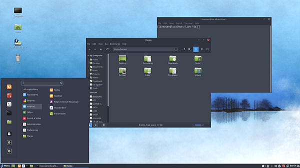 Screen shot of the Cinnammon desktop running on Fedora Linux
